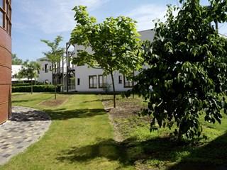 Binnentuinen Rivas