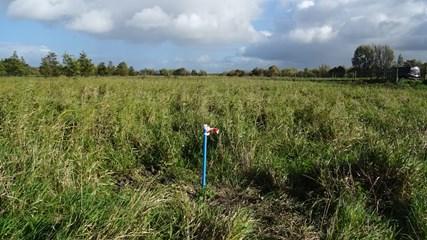 Historisch en verkennend bodemonderzoek Kromslootpark Almere