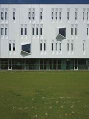 Enexis Zwolle