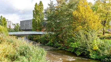 Walbrug