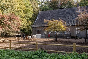 Duitse woningen